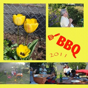 Made with My Memories Suite - BBQ 2