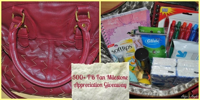500+ FB Likes Appreciation #Giveaway Ends 4/5 at 7p.m. (PST)