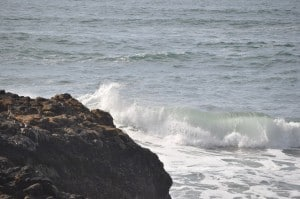 Tuesday Walk & Beach at Devil's Churn (26)