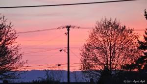 Day 97 - Beautiful Sunset