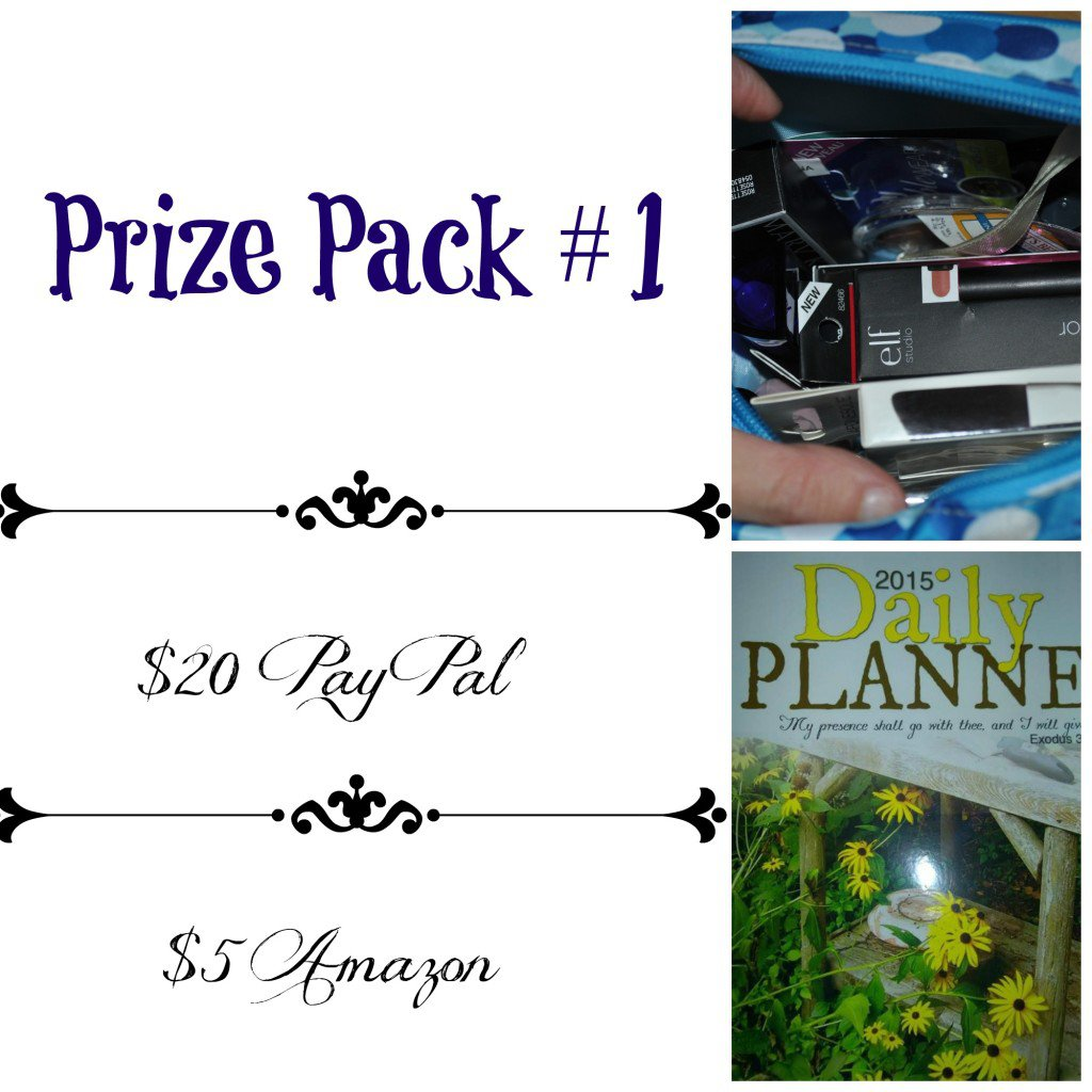 Celebration Giveaway - Prize Pack #1