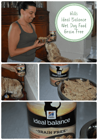 Ideal Balance Wet Dog Food - Grain Free