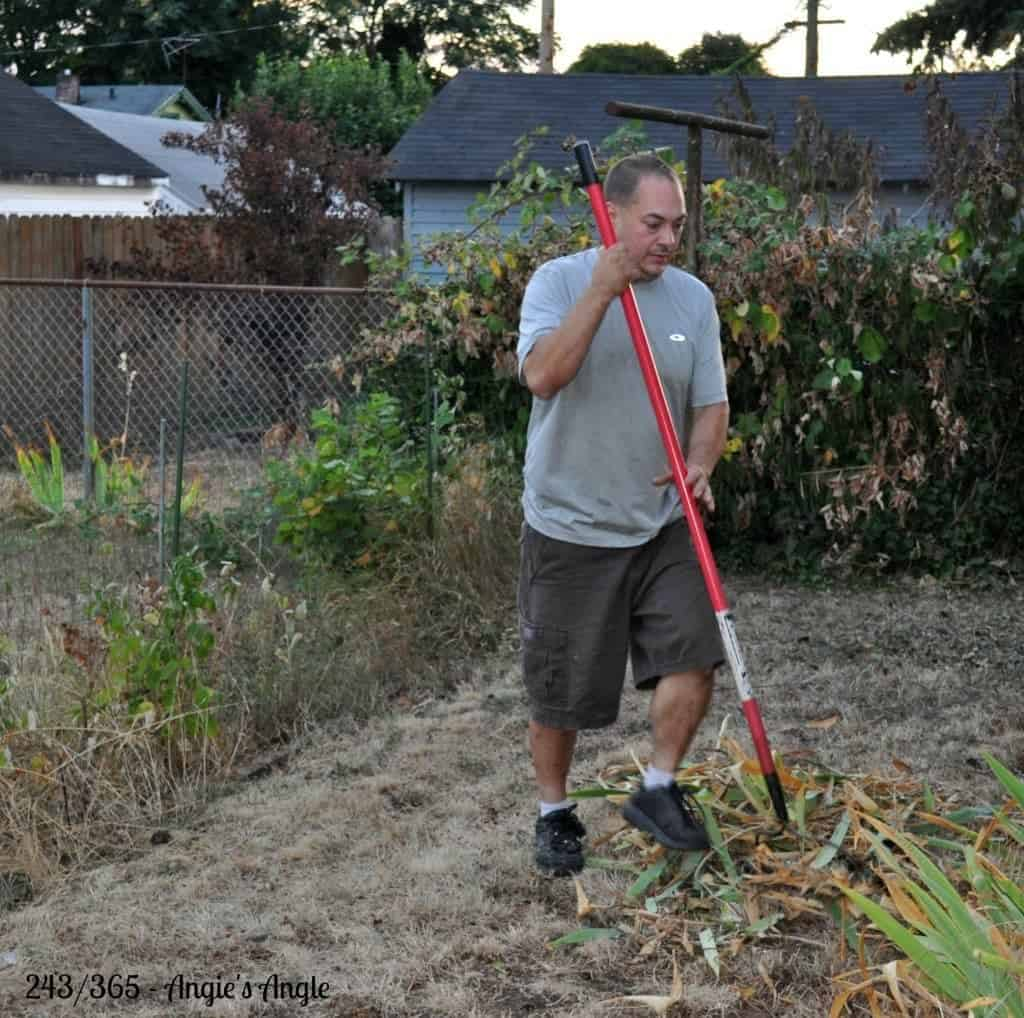 Catch the Moment 365 - Day 243 - Progress in the Yard