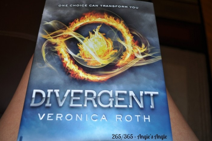 Divergent by Veronica Roth – Book Review #blogboost