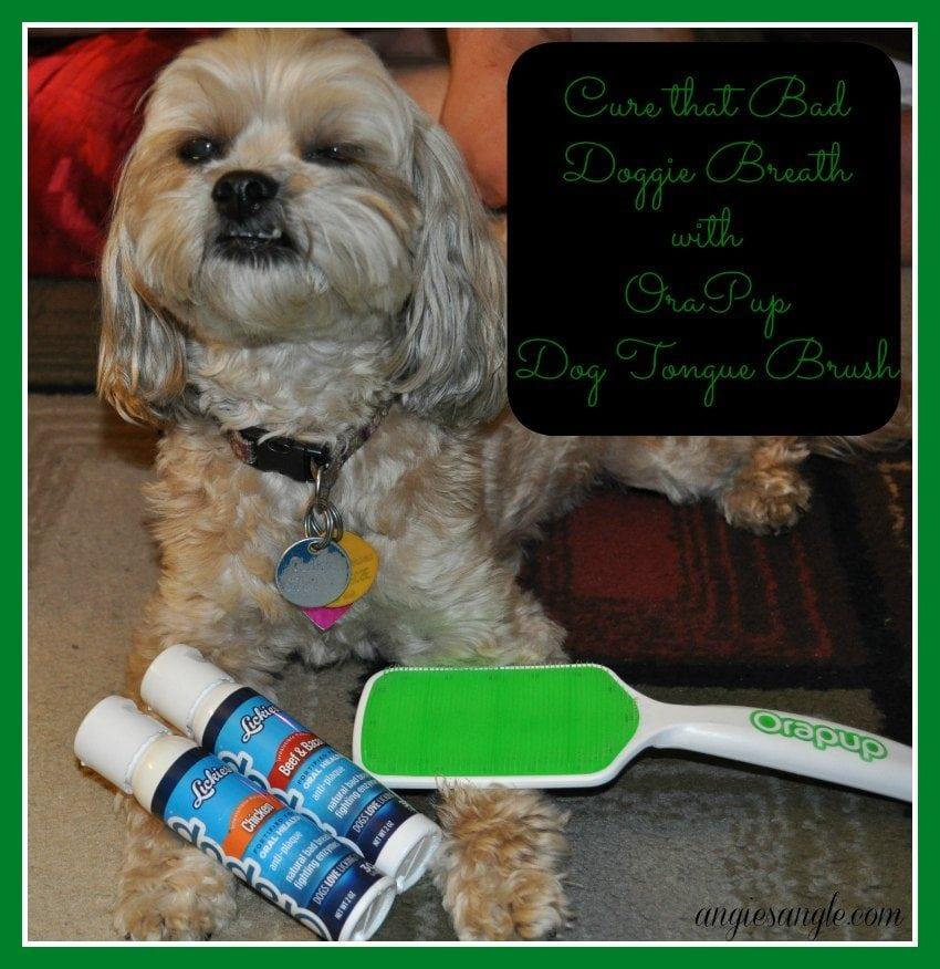 Orapup Dog Tongue Brush Starter Kit with Roxy