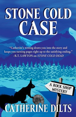 Stone Cold Case Book Review
