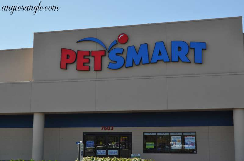 Switching Your Dog To A New Food - Heading to Petsmart