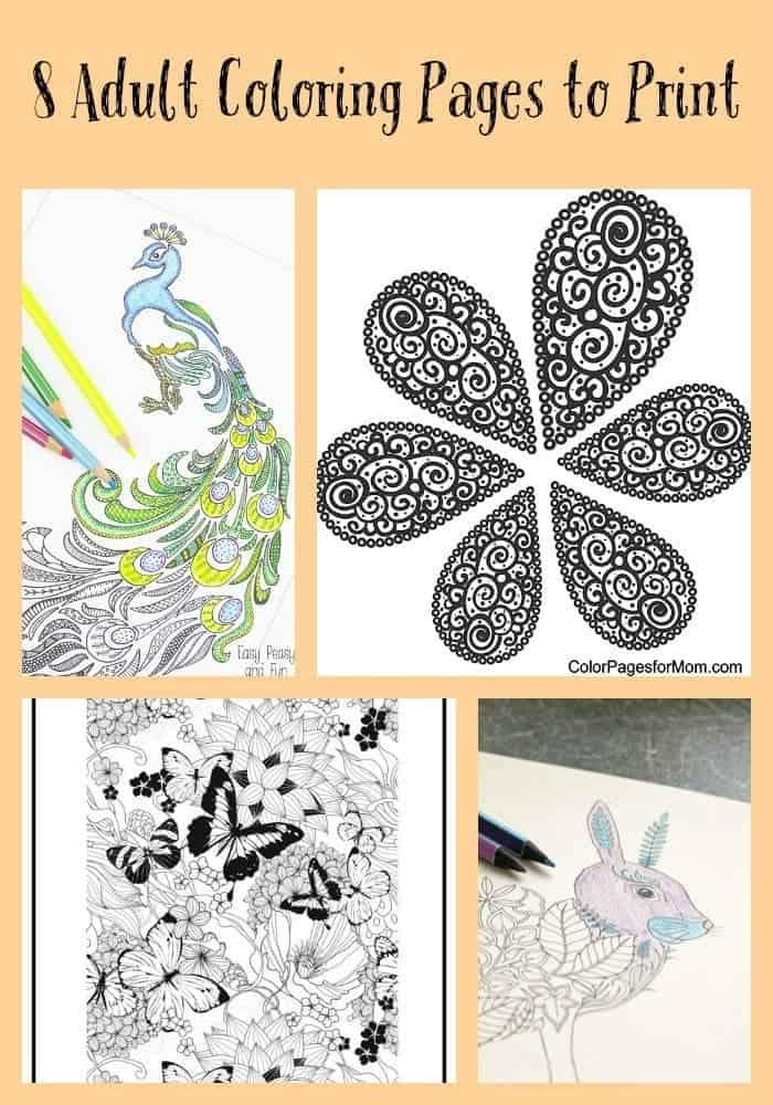 Collection Of Eight Coloring Pages To Print