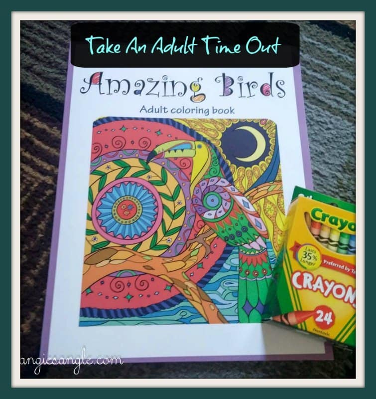 Amazing Birds - Adult Coloring Book - Header