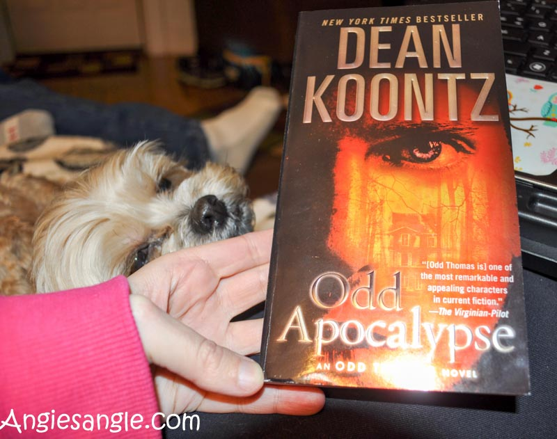 Catch the Moment 366 Week 2 - Day 10 - Current Book, Dean Koontz