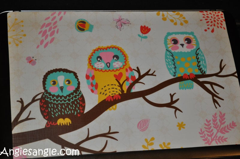 Catch the Moment 366 Week 2 - Day 13 - Owl Laptop Skin