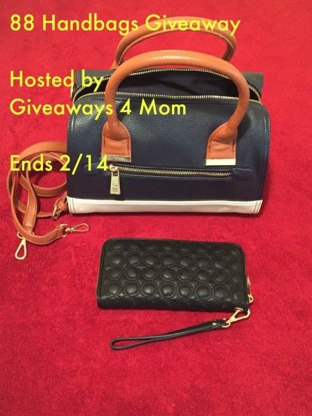 88-Handbags-Giveaway-450x600