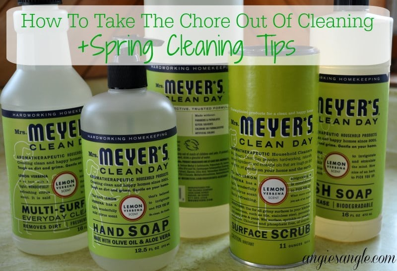 Take The Chore Out Of Cleaning - Title