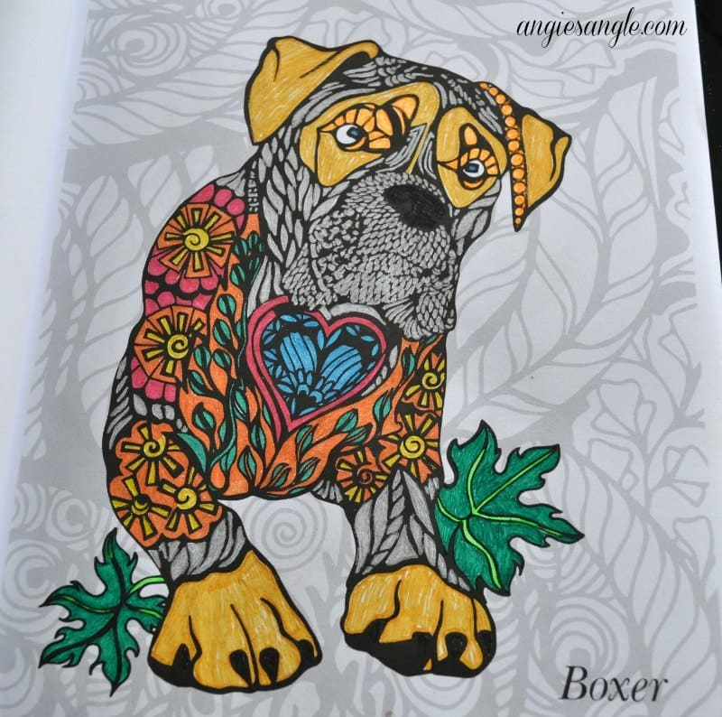 Dogs Art Coloring Book - Finished Boxer