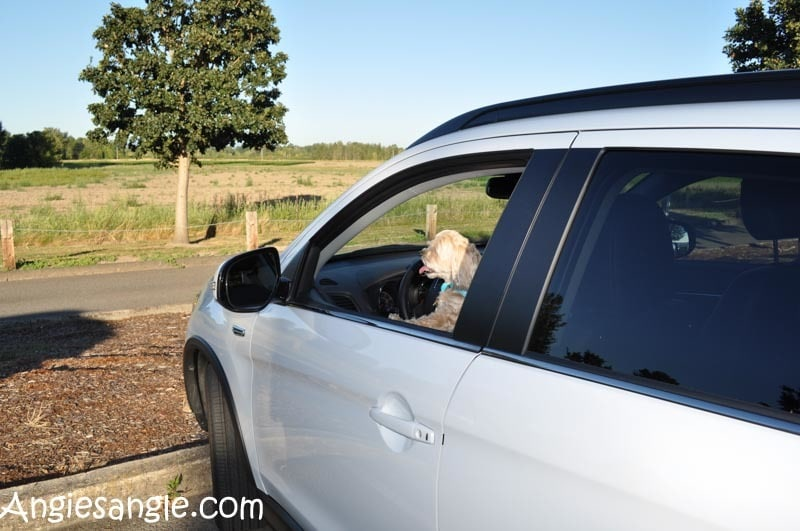 Running Errands With The 2016 Mitsubishi Outlander Sport (55)