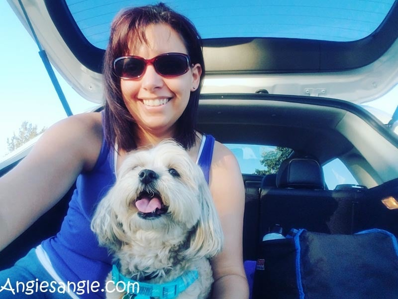 Running Errands With The 2016 Mitsubishi Outlander Sport (58)