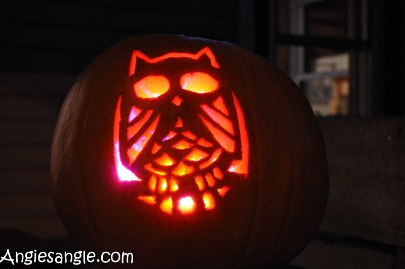 catch-the-moment-366-week-44-day-306-owl-pumpkin