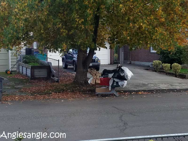 catch-the-moment-366-week-44-day-308-homeless-cart