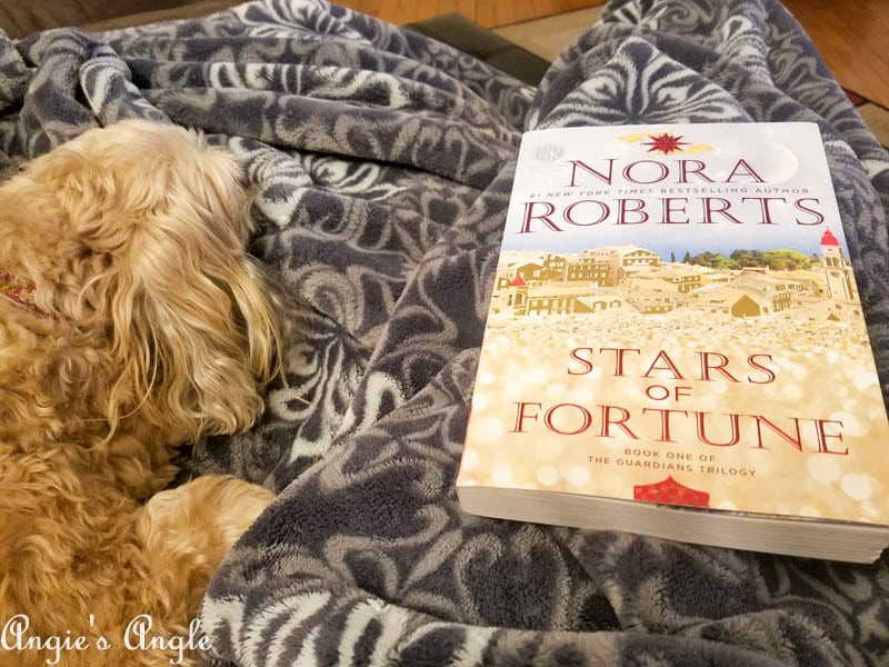 2017 Catch the Moment 365 Week 4 - Day 26 - New Book and Roxy