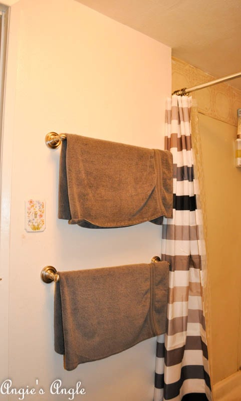 Embarrassed to Show You The Main Bathroom-3