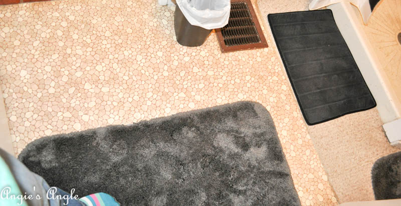 Embarrassed to Show You The Main Bathroom-4