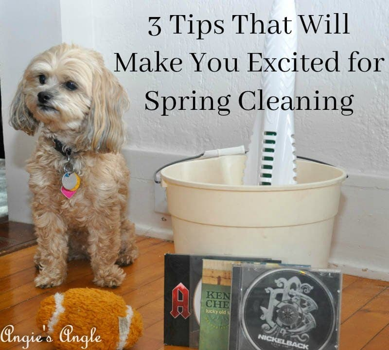Spring Cleaning with Libman-Header