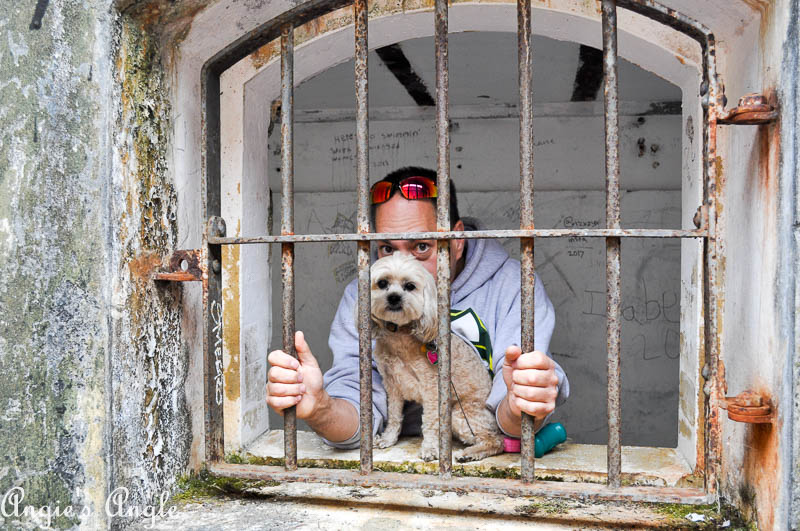 2017 Catch the Moment 365 Week 32 - Day 219 - Roxy and Jason in Jail