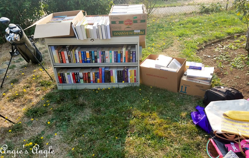 2017 Catch the Moment 365 Week 36 - Day 246 - Yard Sale Books