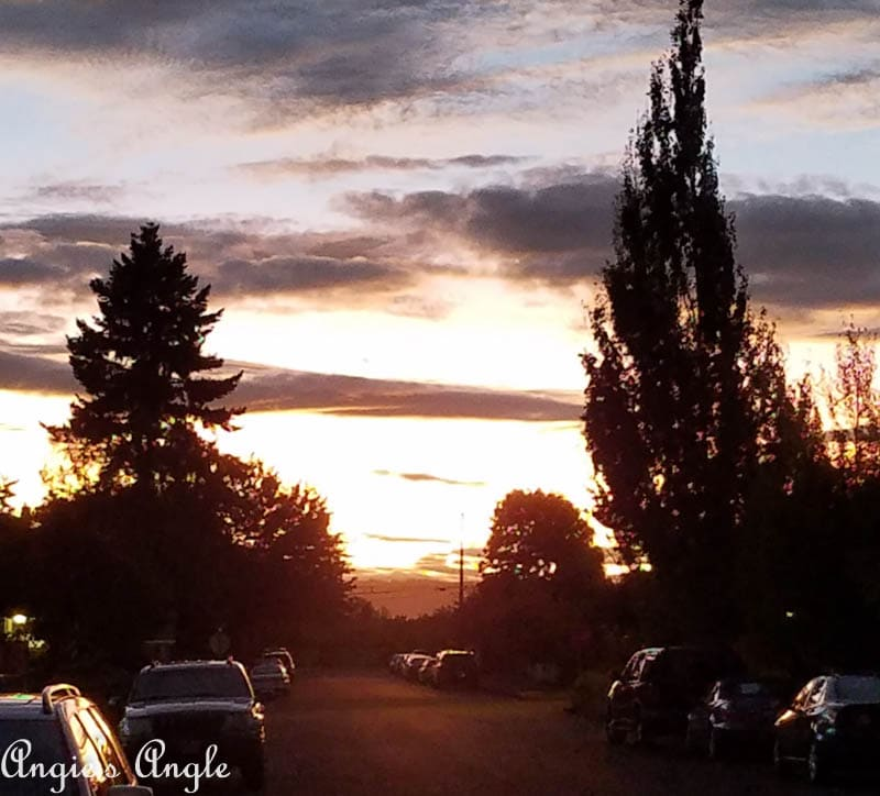 2017 Catch the Moment 365 Week 40 - Day 279 - Another Fall Sunset