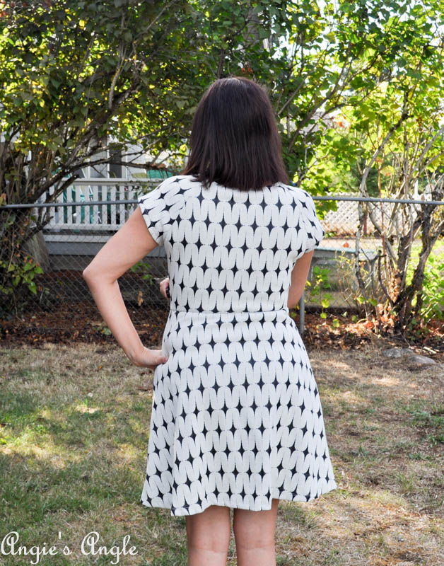 Showcasing Second Stitch Fix - Dress One Back