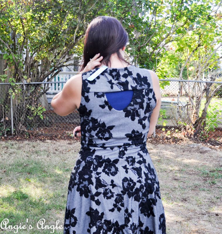 Showcasing Second Stitch Fix - Dress Two Back