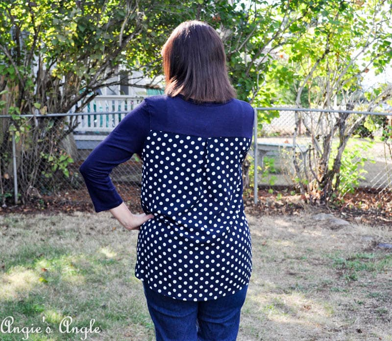Showcasing Second Stitch Fix - Shirt Back