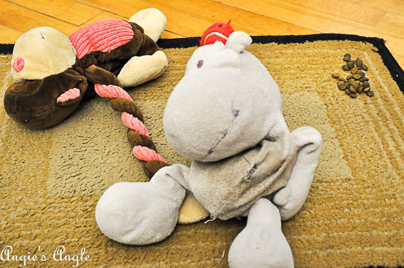 2017 Catch the Moment 365 Week 50 - Day 337 - Hippo and Monkey