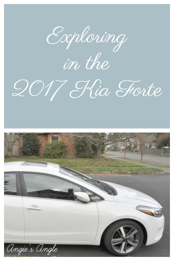 Exploring in the Kia Forte