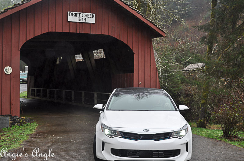 Adventures Happened in the Kia Optima PHEV-0057