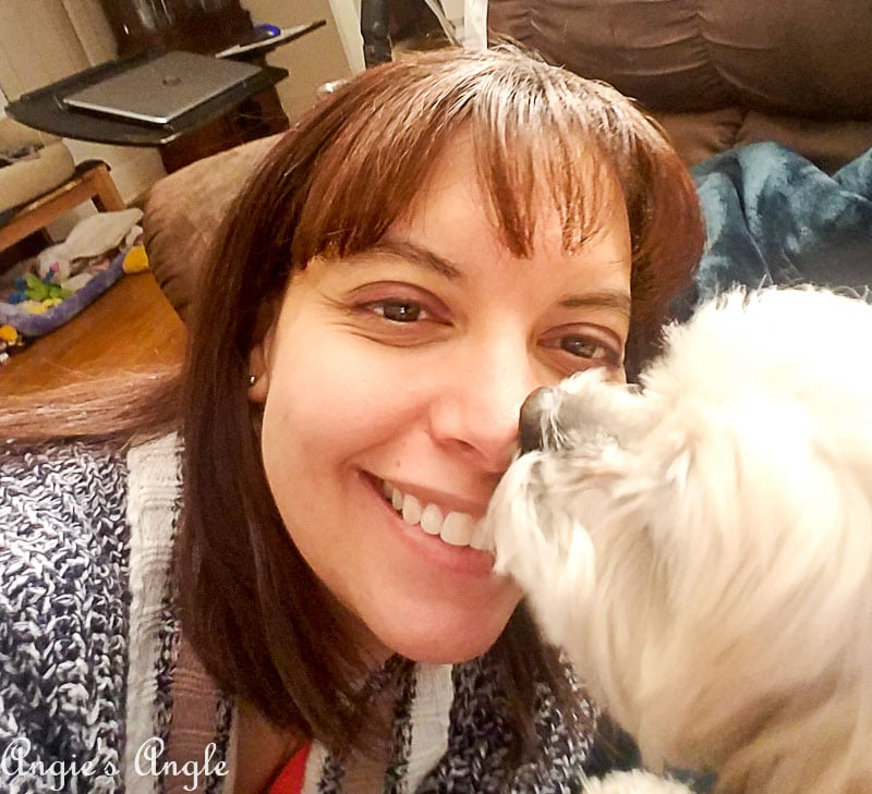 2018 Catch the Moment 365 Week 10 - Day 65 - Kisses from Roxy