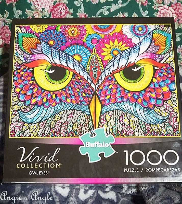 2018 Catch the Moment 365 Week 10 - Day 70 - Owl Puzzle
