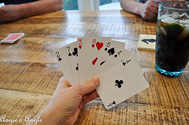 2018 Catch the Moment 365 Week 14 - Day 98 - Vacation Rummy