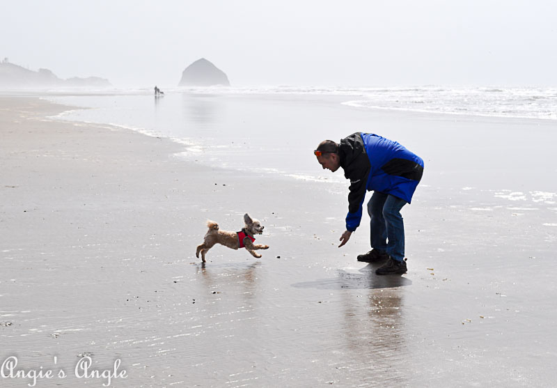 2018 Catch the Moment 365 Week 15 - Day 99 - Roxy and Daddy by the Ocean
