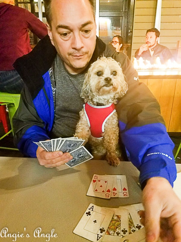 2018 Catch the Moment 365 Week 17 - Day 118 - Rummy at Trap Door Brewing