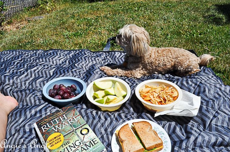 2018 Catch the Moment 365 Week 21 - Day 147 - Roxy and I have a Picnic