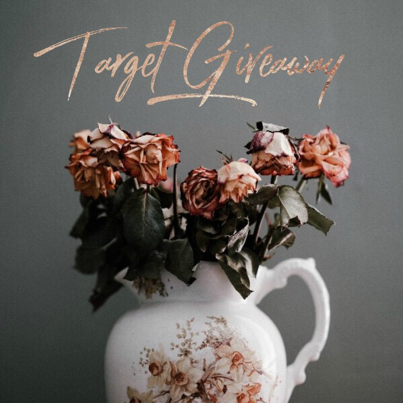 May Target Insta Giveaway ends June 29, 2018