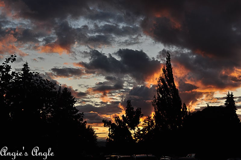 2018 Catch the Moment 365 Week 35 - Day 242 - Wonderful Evening Skies