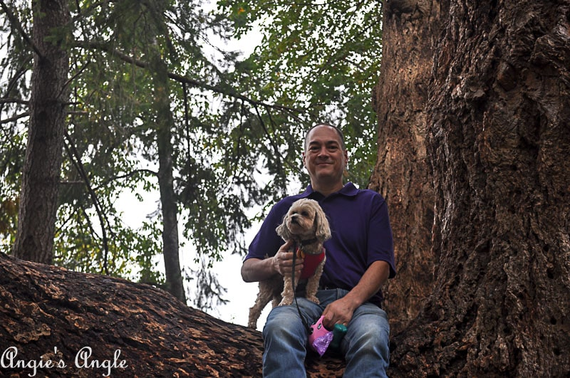 2018 Catch the Moment 365 Week 40 - Day 279 - Jason and Roxy in a Tree