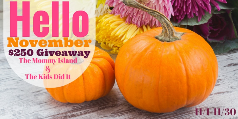 Chance at $250 Cash in the Hello November Giveaway