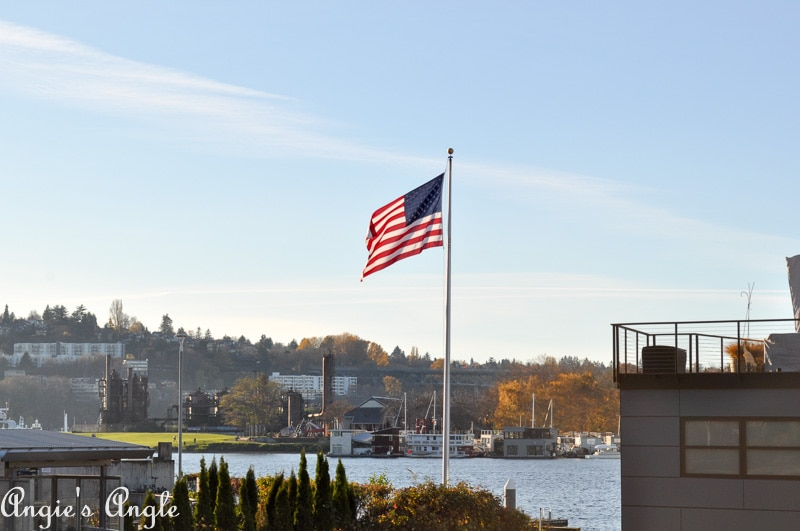 2018 Catch the Moment 365 Week 46 - Day 321 - Flag on Lake Union