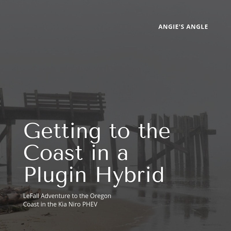 Cost in a Plugin Hybrid - Social