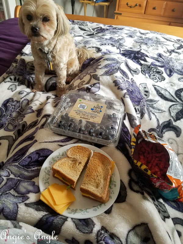 2018 Catch the Moment 365 Week 51 - Day 353 - Bed Lunch
