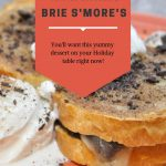 Twisted Chocolate Brie Smores - Pin