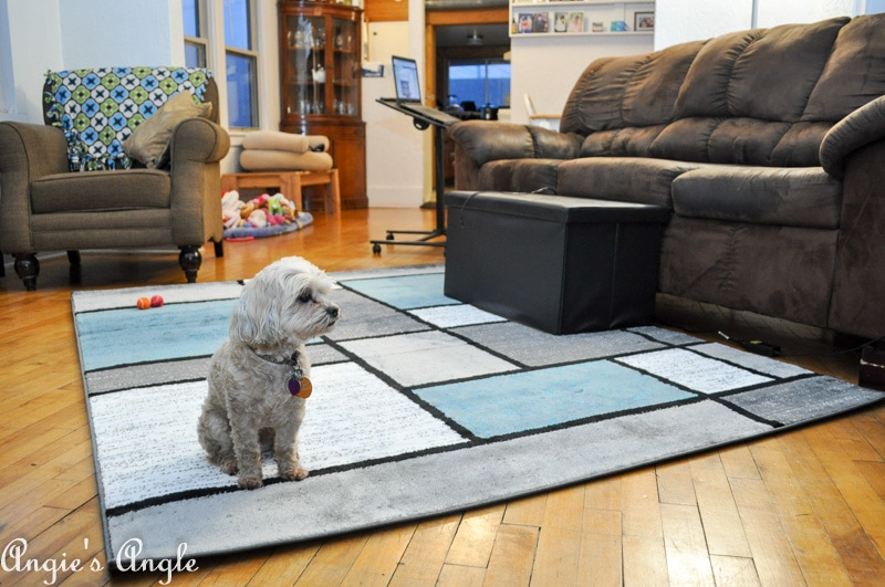 Refresh Your Space - New Rug Roxy Approved